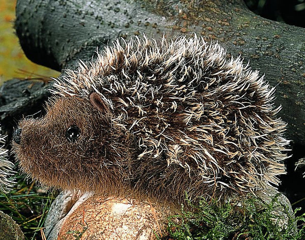 """Stachel"" Mohair Hedgehog"