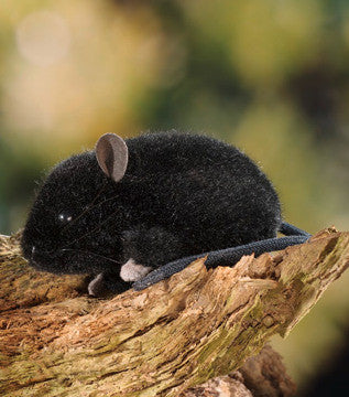 """Archie"" Black Mouse"