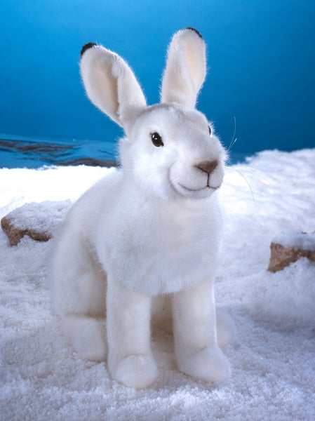 """Timmi"" Snow Hare Rabbit"