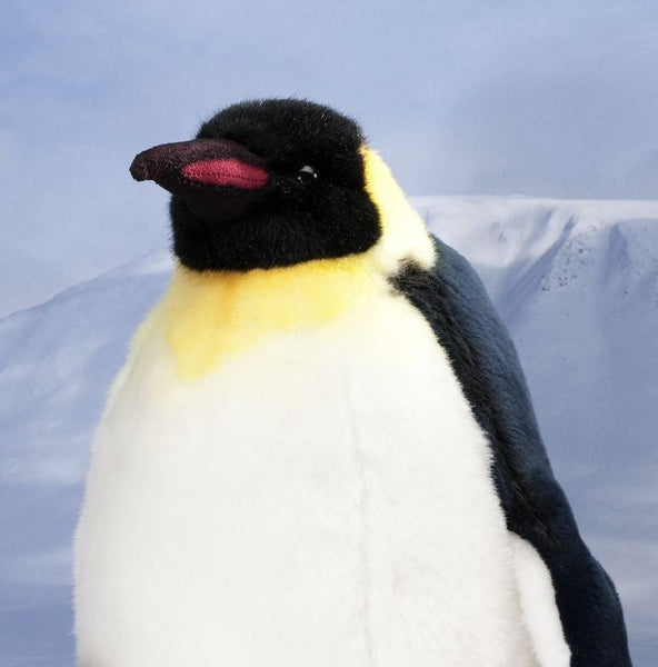 """Bond"" Penguin"