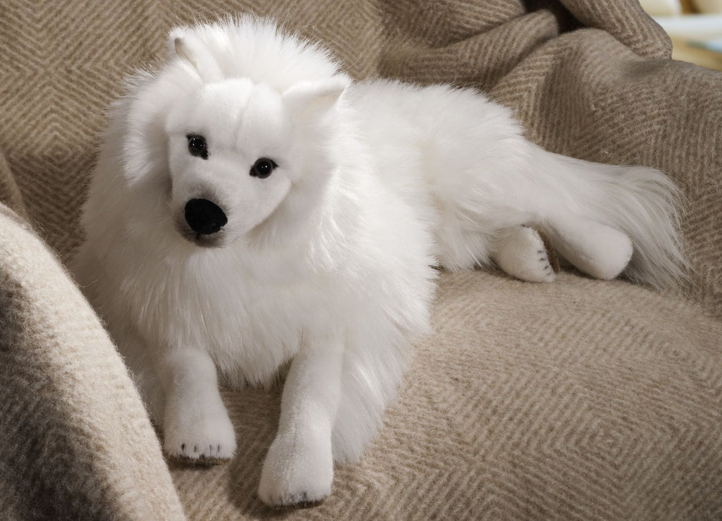 """Empress"" Japanese Spitz Dog"