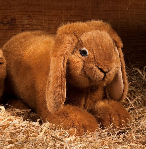 """Fresco"" Dwarf Lop Eared Rabbit, Rust"