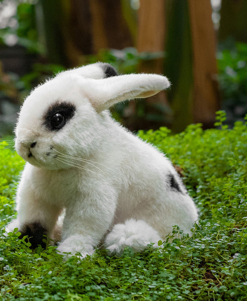 """Flecki"" White Bunny Rabbit"