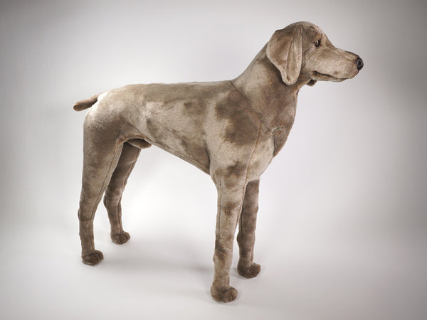 """Smoek"" Weimaraner Dog"