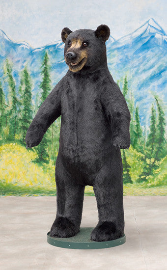 """Bart"" Black Bear"