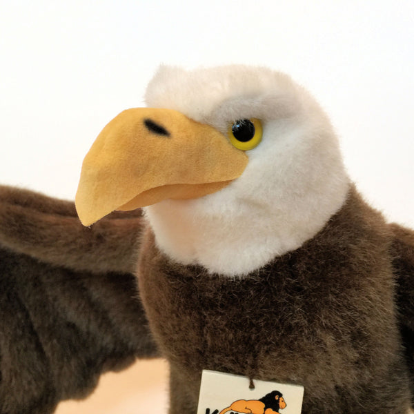 """George"" Bald Eagle"