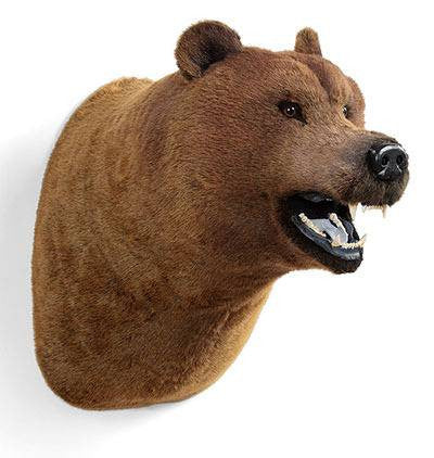 """Wahl"" Grizzly Bear Wall Mount"