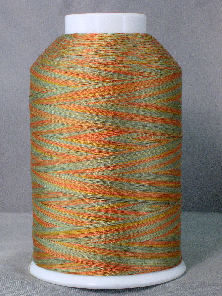 Machine Quilting Thread Cotton 3000yd Variegated
