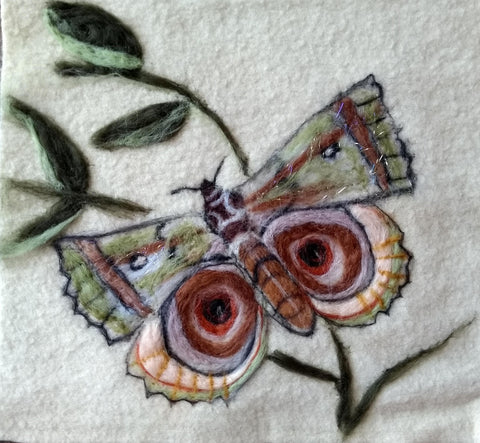 Needle felt a butterfly picture