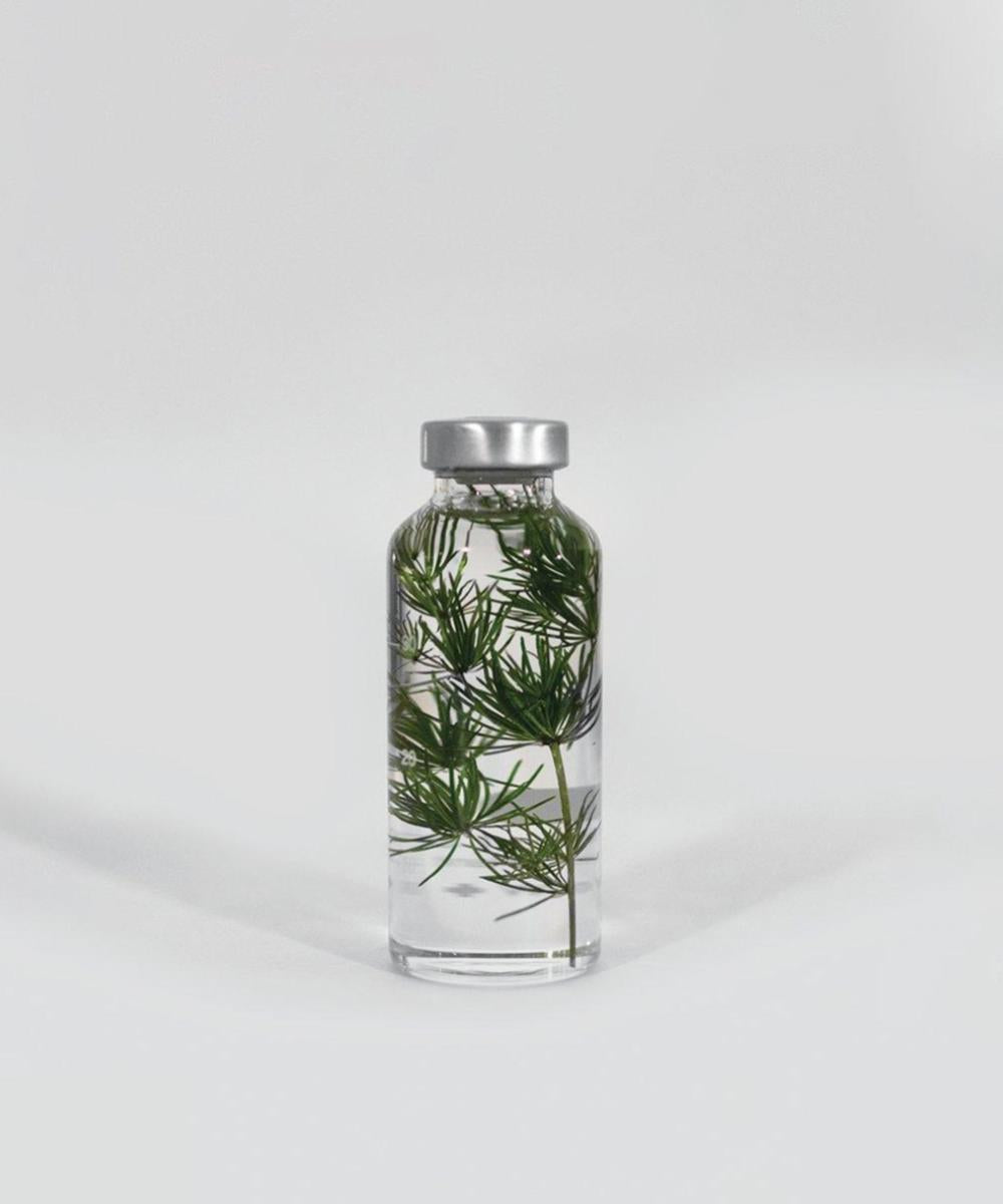 Slow Pharmacy Myriophyllum 30ml