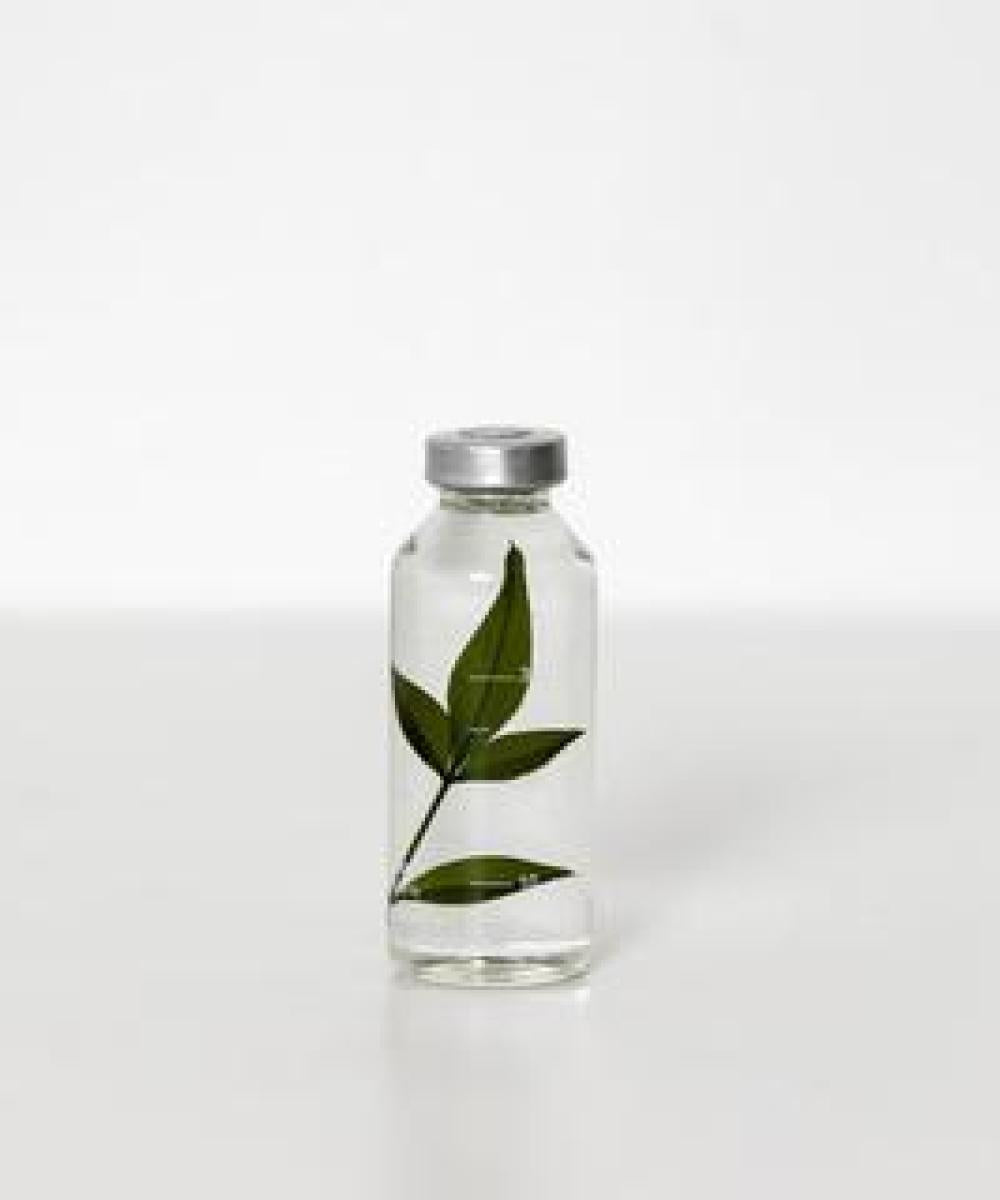 Slow Pharmacy Nandina Domestica 30ml