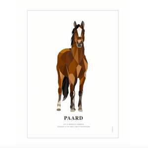 Poster Paard