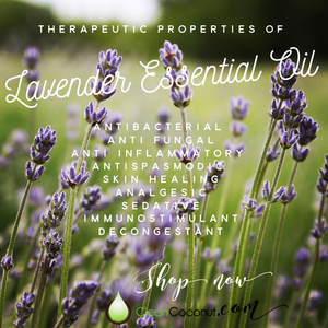 Why Should You Have Lavender In Your Essential Oil Collection?
