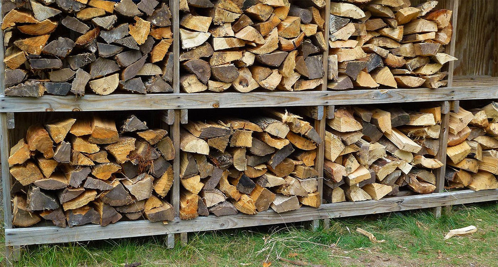 11 Best Types Of Firewood For Your Fireplace