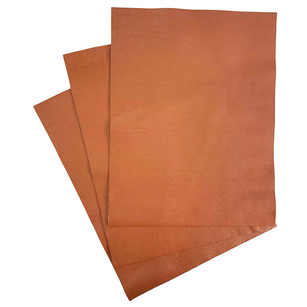 "Dakota Whiskey Garment Leather 8.5"" x 11"""