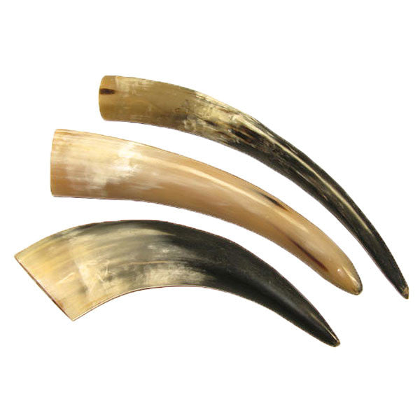 Image of 32-00029 - Buffalo Horns - Single