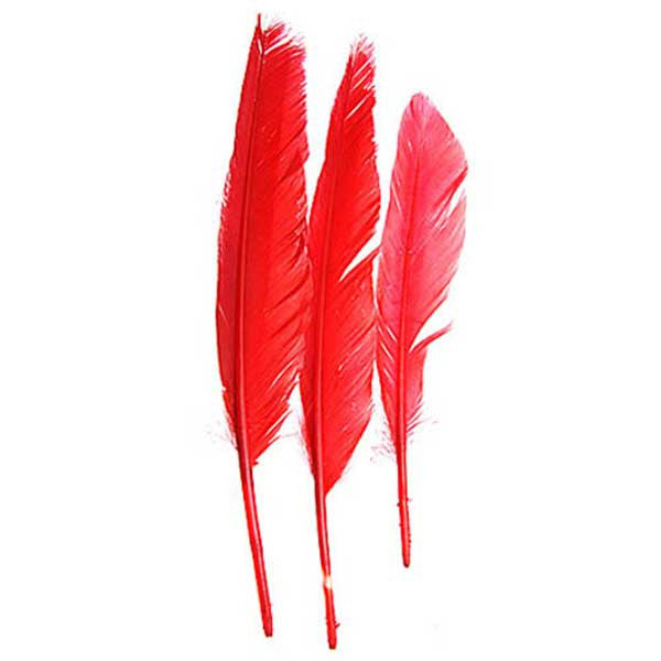 "Image of 78003007-02H - Duck Quill 12 Pack 7"" Red"