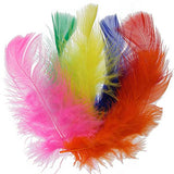 "Image of 78003000-99H - Marabou Feathers 4-6"" 20g Multi"