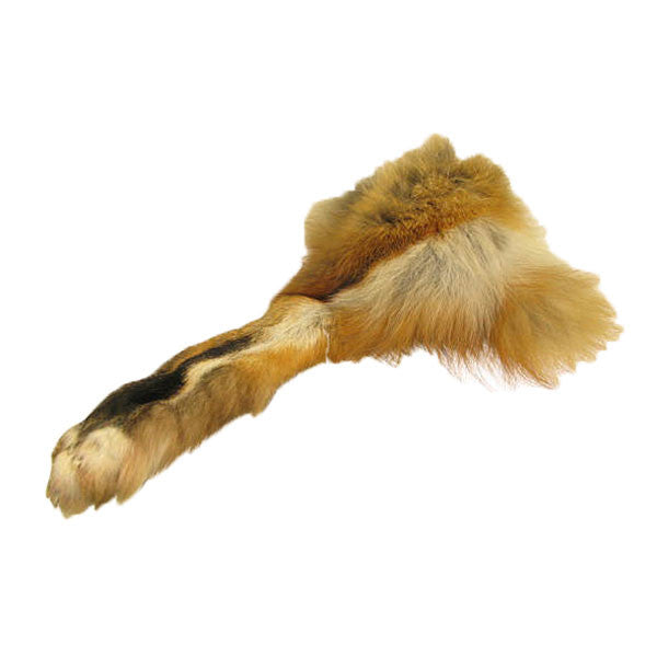 Image of 32-00010 - Red Fox Paw