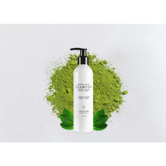 Graydon Matcha Mint Shampoo - Bath & Body