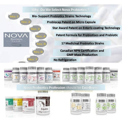 NOVA Probiotics Multi-Strain XTREME CARE 165 Billion - NOVA Probiotics