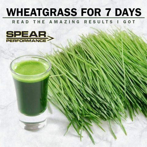 Took Wheatgrass for 7 Days! Here are the immediate results...