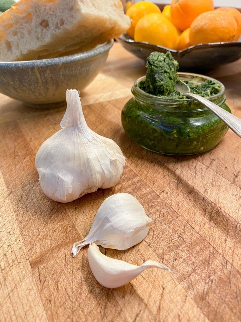 Garlic | Medicines Close at Hand