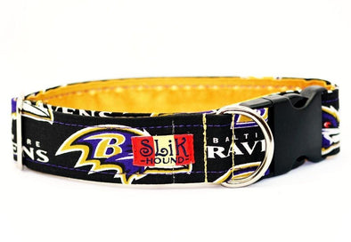BALTIMORE RAVENS THEMED