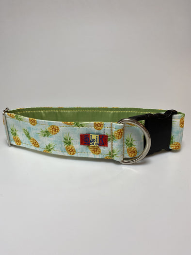 "2"" Wide, 18-30"" long, plastic buckle, Pineapple Under the Sea"