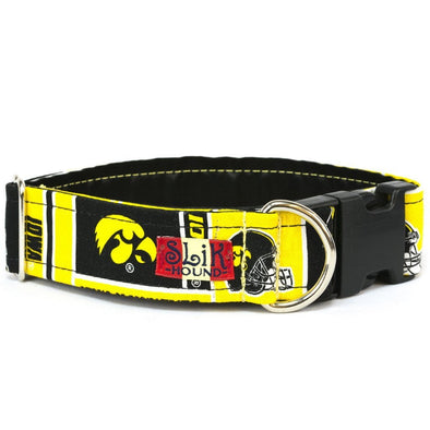 IOWA HAWKEYES THEMED