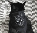 Cat Cape (Cat Coven Bandana)
