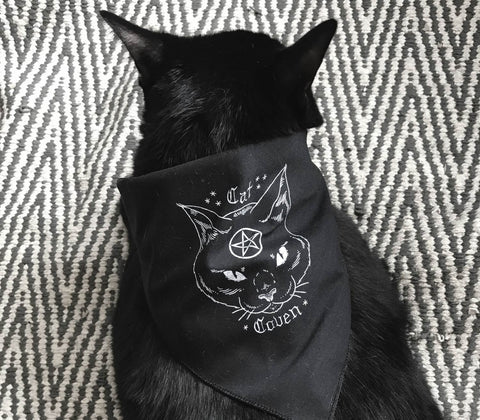 ✷PRE-ORDER✷ Cat Cape (Cat Coven Bandana)