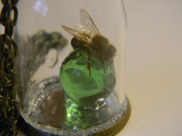 Mirrored Honeybee on Green Marble