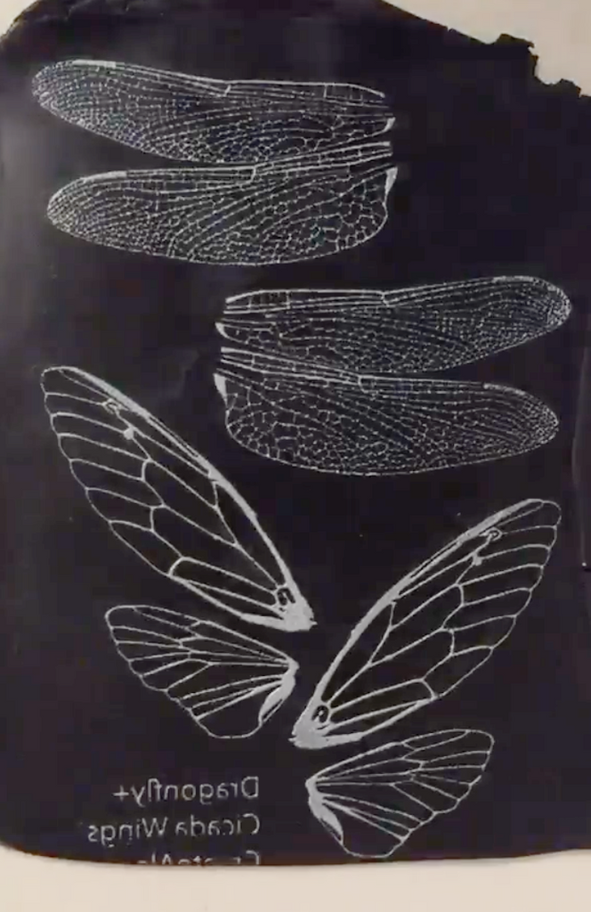 Silkscreen Dragonfly & Cicada Authentic Wings Stencil polymer clay - Polymer Clay TV tutorial and supplies