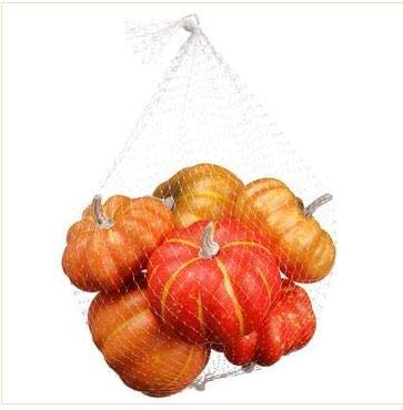 TenWaterloo Autumn Artificial Gourds and Mini Pumpkins for Fall Harvest Decorating and Displaying