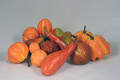 Autumn Mixture of 12 Artificial Gourds and Pumpkins for Fall Harvest Decorating and Displaying