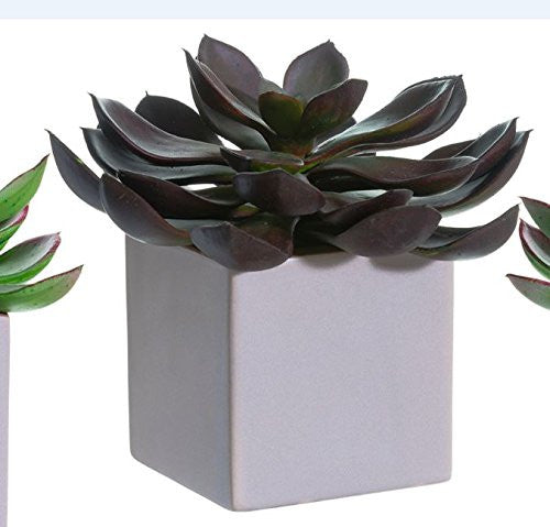 10 Inch High Large Artificial Echeveria Plant In Taupe Glazed Ceramic Pot