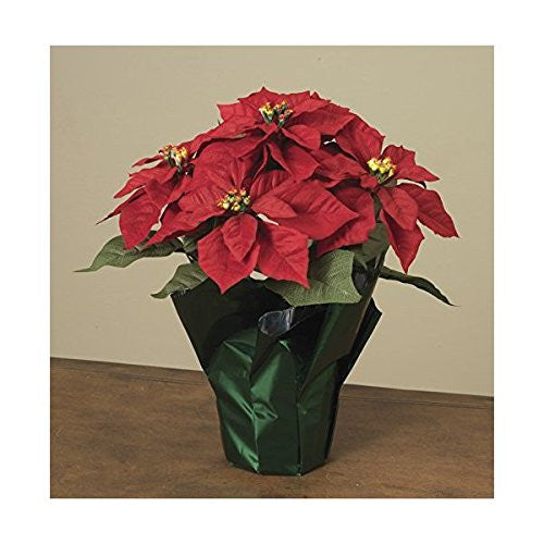 "14"" Potted Red Poinsettia Plant with 5 Flowers"