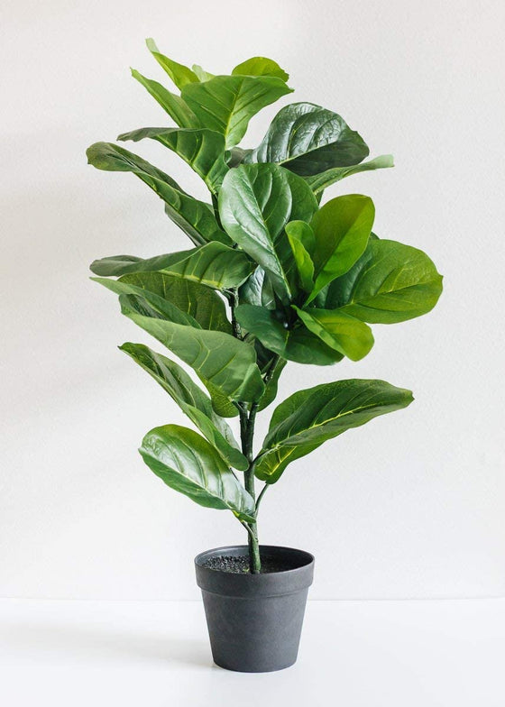 "Afloral Fake Fiddle Leaf Fig Tree Floor Plant in Pot - 31.5"" Tall"