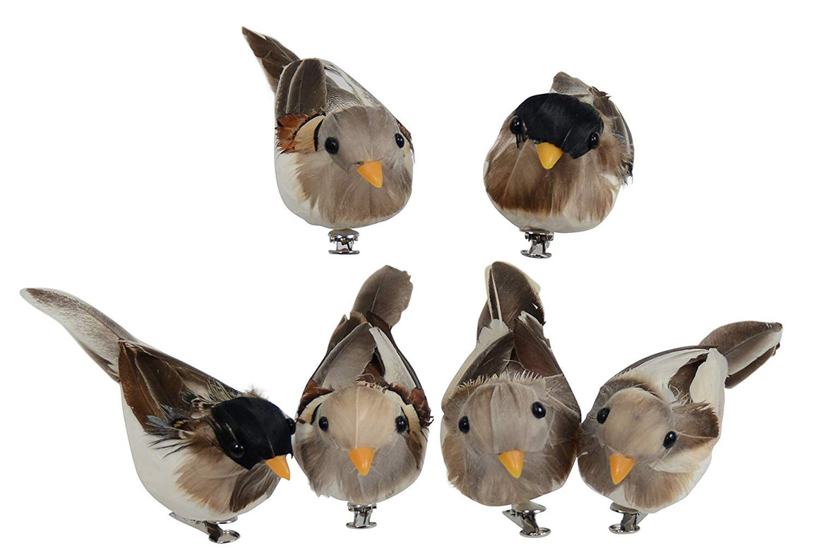 Ten Waterloo Set of 6 Sparrow Birds with Real Feathers and Clips, Songbirds 4 Inches x 2.25 Inches