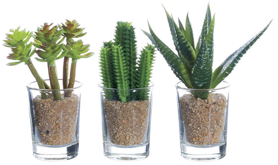 Ten Waterloo Set of 3 Artificial Potted Cacti - 4 inches high