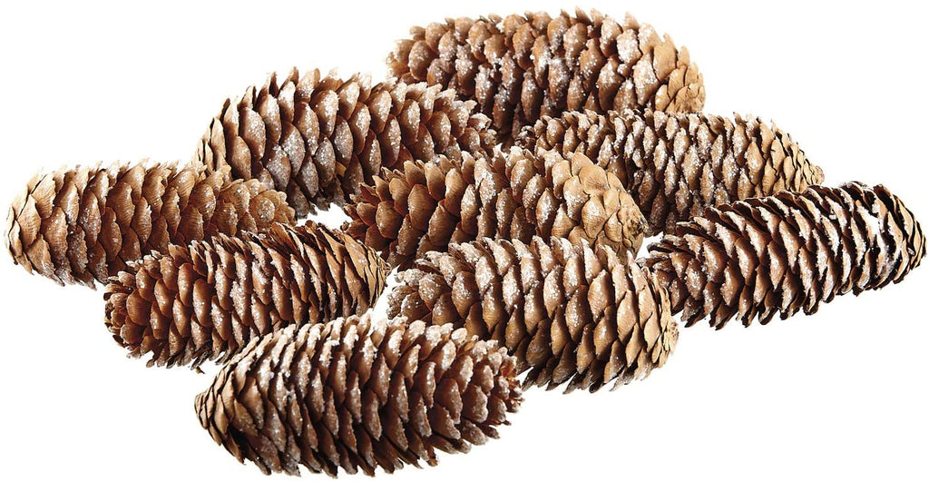TenWaterloo Sparkled Pine Cones, Pine Cone Bowl Filler, Bag of 9, 2.5 to 2.75 Inches