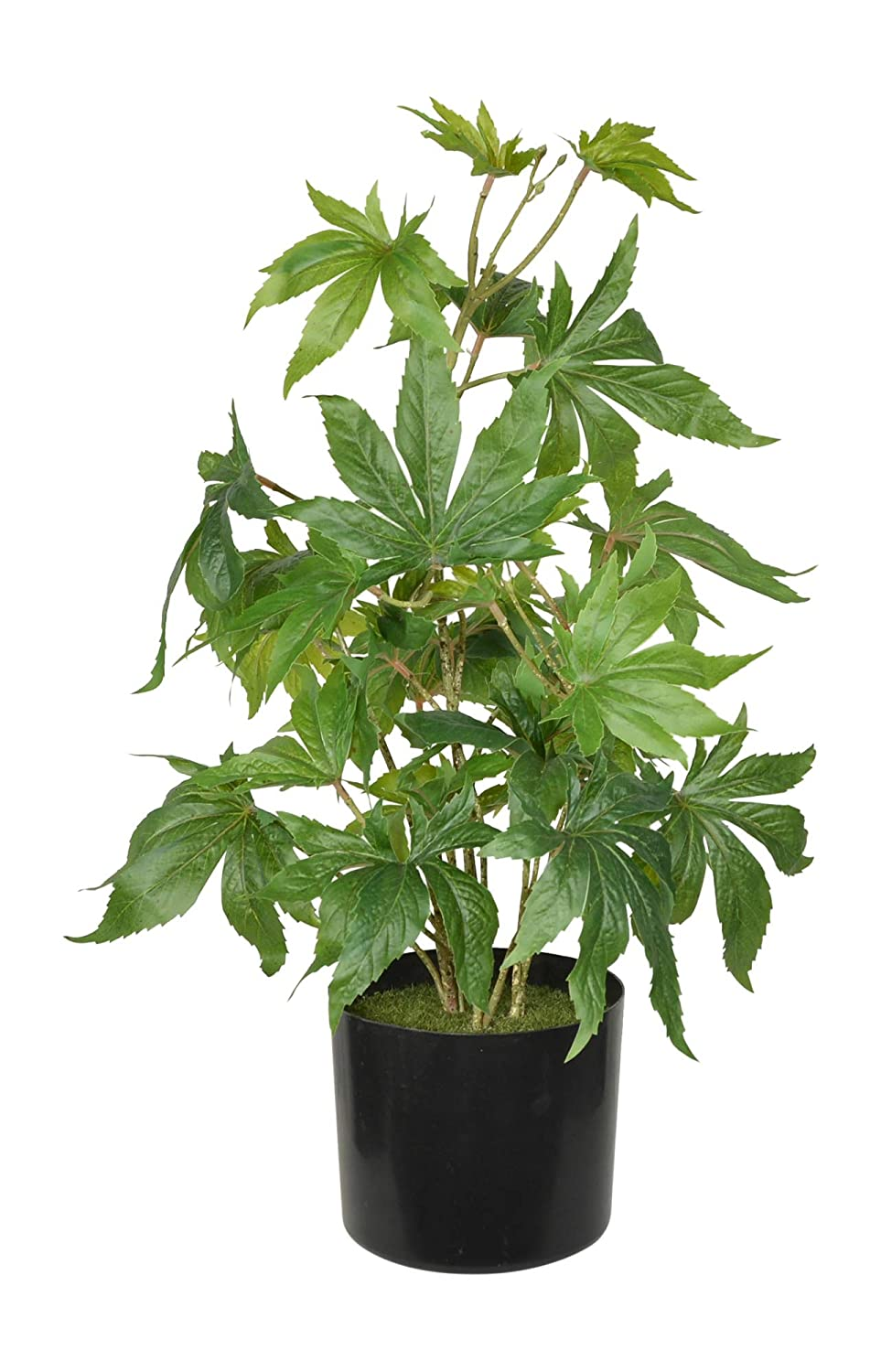 TenWaterloo 24 Inch Artificial Marijuana Plant, Potted Plant, Cannabis Plant