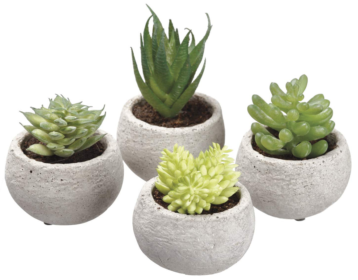 Ten Waterloo Set of 4 Artificial Potted Succulent Plants - 3.5 Inches High x 2.5 Inches Wide