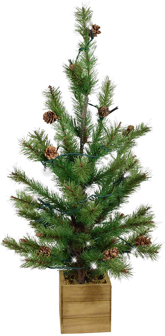 TenWaterloo Potted Christmas Pine Tree with Timer,Lights and Pine Cones 22 Inch High, Artificial Pine Decor