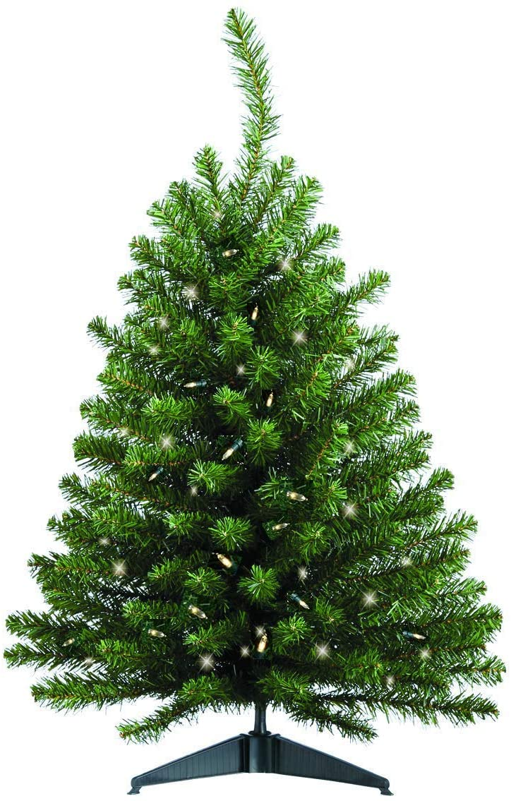 Ten Waterloo Pre-Lit Battery Operated with Timer 3 Foot High x 22 Inches Wide Artificial Christmas Balsam Pine Tree with 100 LED Lights, 137 Tips On Base