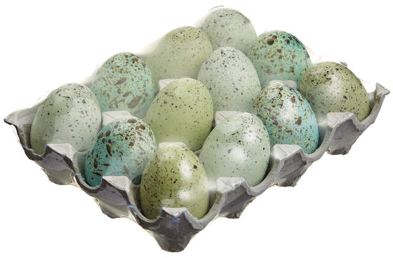 Ten Waterloo Speckled Decorator Spring Eggs, 2.5 Inches, Artificial Eggs for Vases and Bowls