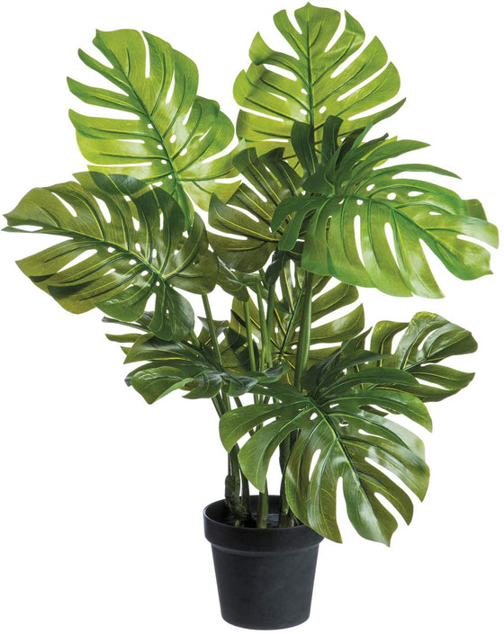 Set of 2, 26 Inch High Artificial Monstera Adansonii Plants in Pots
