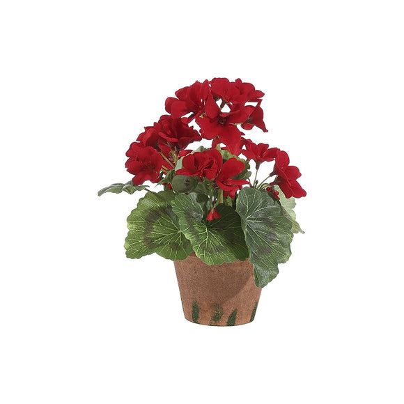 9 Inch High Potted Red Geranium In Pot