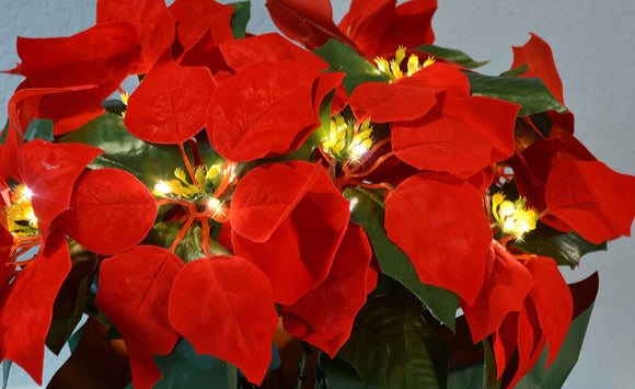 TenWaterloo 18 Inch High LED Lighted Artificial Red Christmas Potted Poinsettia Plant, Battery Operated with Timer